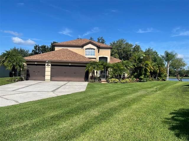 162 Longhirst Loop, Ocoee, FL 34761 (MLS #O5959985) :: Aybar Homes