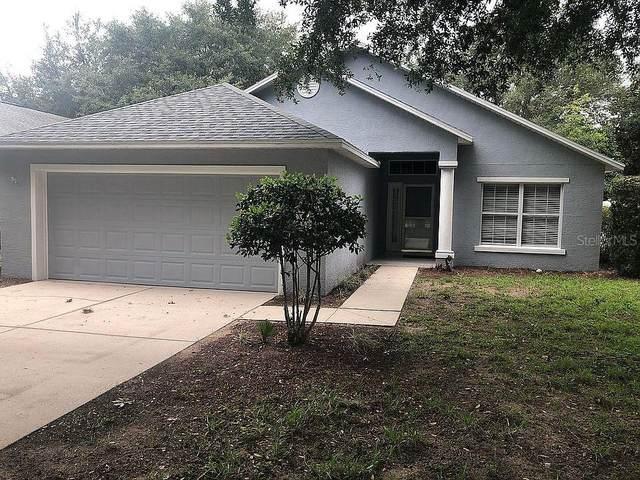 33341 Kaylee Way, Leesburg, FL 34788 (MLS #O5960026) :: Zarghami Group