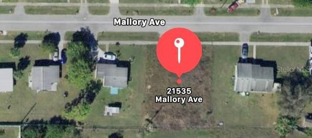 21535 Mallory Avenue, Port Charlotte, FL 33952 (MLS #O5960129) :: The Hesse Team