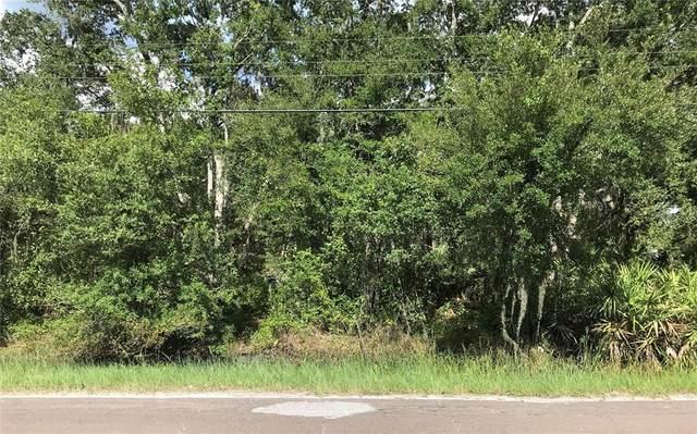 6102 N Dormany Road, Plant City, FL 33565 (MLS #O5960135) :: GO Realty