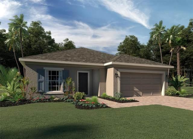 1201 Lone Palm, Saint Cloud, FL 34771 (MLS #O5960156) :: Zarghami Group