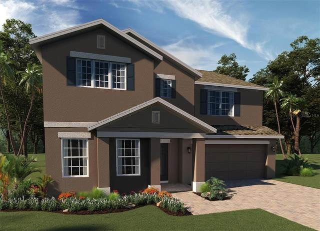 1191 Lone Palm, Saint Cloud, FL 34771 (MLS #O5960161) :: Zarghami Group
