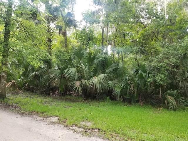 1640 E Park Trail, Deltona, FL 32725 (MLS #O5960188) :: RE/MAX Elite Realty