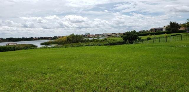 5356 Water Creek Drive, Windermere, FL 34786 (MLS #O5960260) :: Expert Advisors Group