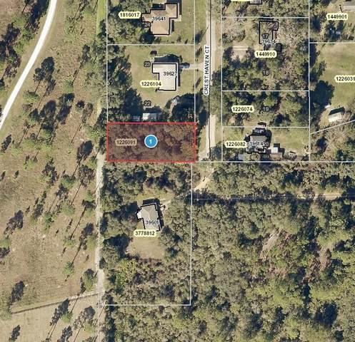 Crest Haven Court, Umatilla, FL 32784 (MLS #O5960415) :: Zarghami Group