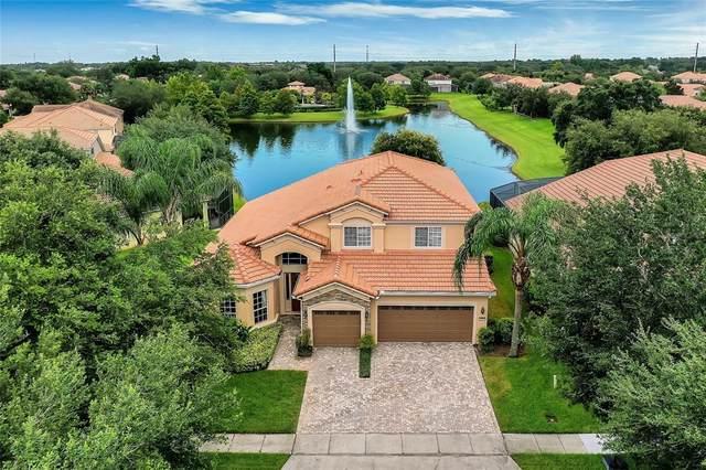 419 Douglas Edward Avenue, Ocoee, FL 34761 (MLS #O5960429) :: Pristine Properties