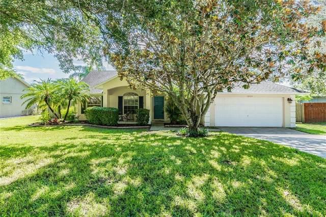 10523 Mira Lago Lane, Clermont, FL 34711 (MLS #O5960448) :: CGY Realty