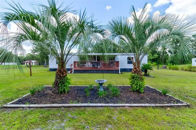 33339 Evergreen Road, Deland, FL 32720 (MLS #O5960462) :: Zarghami Group