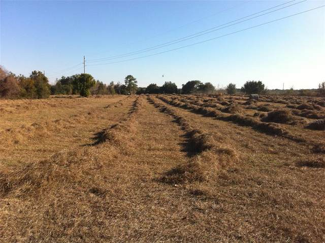 Number Two Road, Yalaha, FL 34797 (MLS #O5960486) :: The Paxton Group