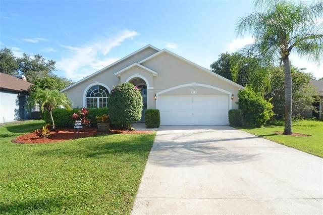 111 Spring Ridge Drive, Debary, FL 32713 (MLS #O5960641) :: Zarghami Group