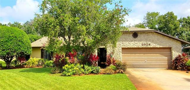 2026 King Richard Drive, Titusville, FL 32796 (MLS #O5960676) :: Kelli and Audrey at RE/MAX Tropical Sands