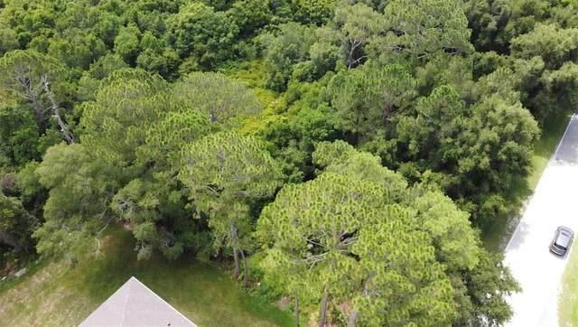 Deltona, FL 32725 :: Keller Williams Realty Peace River Partners