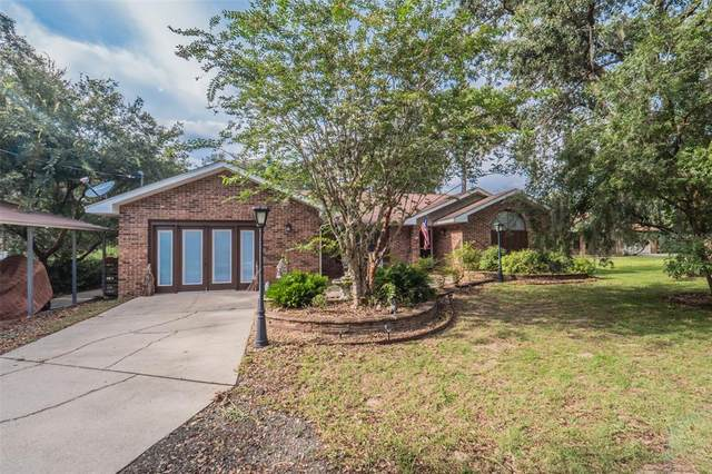 10731 Claire Drive, Leesburg, FL 34788 (MLS #O5960737) :: Premium Properties Real Estate Services