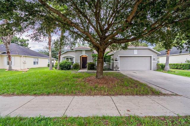 1325 Tilapia Trail, Deland, FL 32724 (MLS #O5960750) :: Young Real Estate