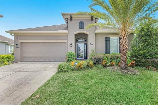 7507 Atwood Drive, Wesley Chapel, FL 33545 (MLS #O5960839) :: Frankenstein Home Team