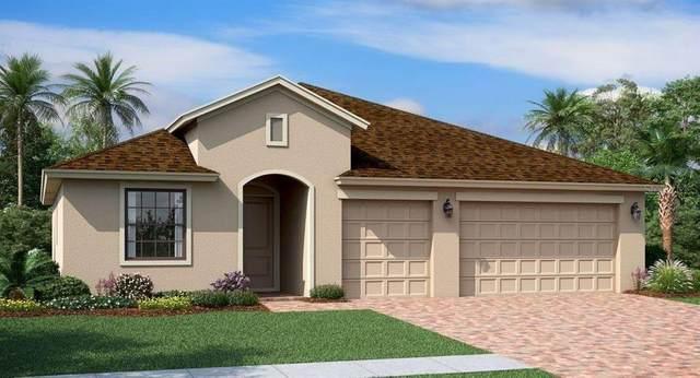 10010 W Verona Circle, Vero Beach, FL 32966 (#O5960931) :: Caine Luxury Team