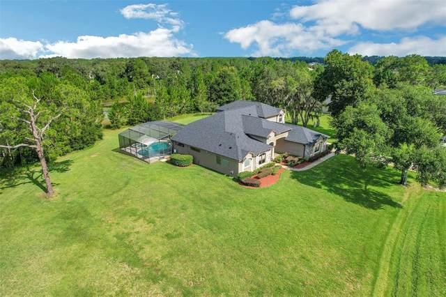 11001 Arrowtree Boulevard, Clermont, FL 34715 (MLS #O5961002) :: Vacasa Real Estate