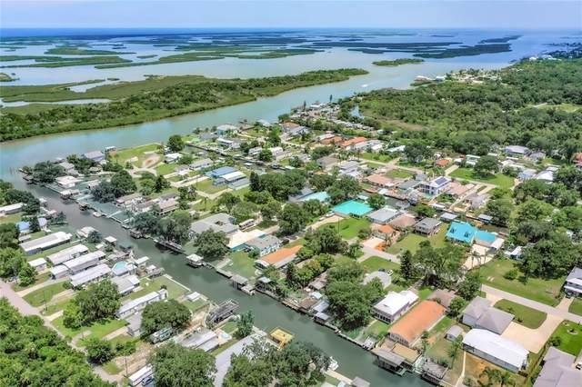 255 Randle Avenue, Oak Hill, FL 32759 (MLS #O5961131) :: Gate Arty & the Group - Keller Williams Realty Smart