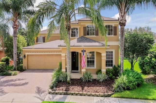 13742 Amelia Pond Drive, Windermere, FL 34786 (MLS #O5961137) :: The Heidi Schrock Team