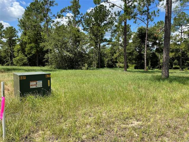 Bonsmara Drive #23, Groveland, FL 34736 (MLS #O5961145) :: Premium Properties Real Estate Services