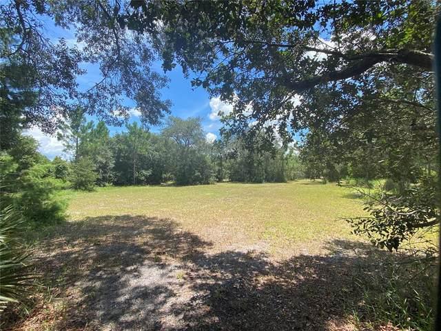 111 Butler Ridge Court, Deltona, FL 32738 (MLS #O5961192) :: Griffin Group