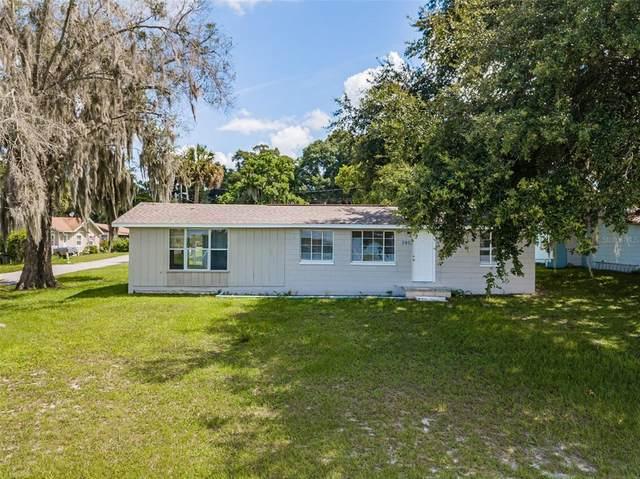 290 Lakeshore Drive, Umatilla, FL 32784 (MLS #O5961238) :: Zarghami Group