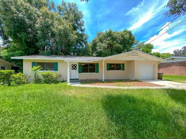 6706 Fern Circle, Leesburg, FL 34748 (MLS #O5961241) :: Zarghami Group