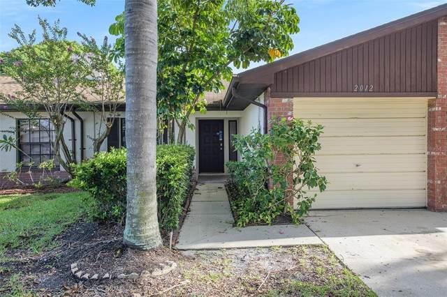 2012 Dover Court, Oldsmar, FL 34677 (MLS #O5961267) :: Pristine Properties