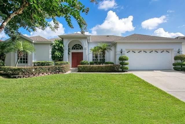 3711 Half Moon Drive, Orlando, FL 32812 (MLS #O5961275) :: Zarghami Group