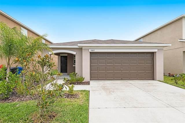 17013 Yellow Pine Street, Wimauma, FL 33598 (MLS #O5961318) :: Zarghami Group