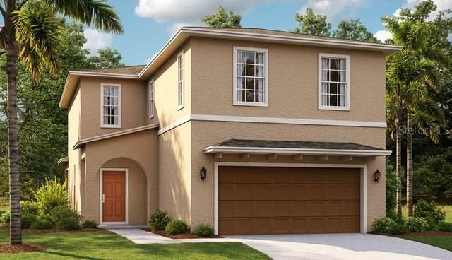 5099 Sea Mist Lane, Wesley Chapel, FL 33545 (MLS #O5961503) :: Team Bohannon