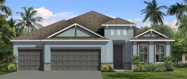 3083 Silvermines Avenue, Ormond Beach, FL 32174 (MLS #O5961516) :: Zarghami Group