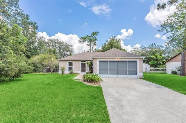 142 Neal Drive, Deltona, FL 32738 (MLS #O5961535) :: American Premier Realty LLC