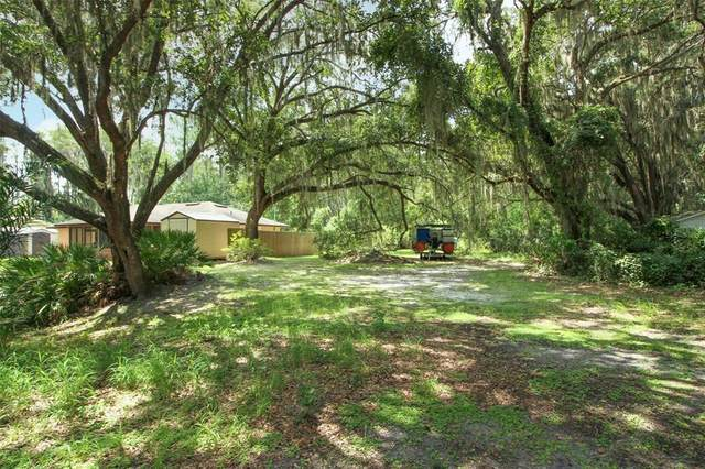 Browns Canal Drive, Clermont, FL 34711 (MLS #O5961597) :: Prestige Home Realty