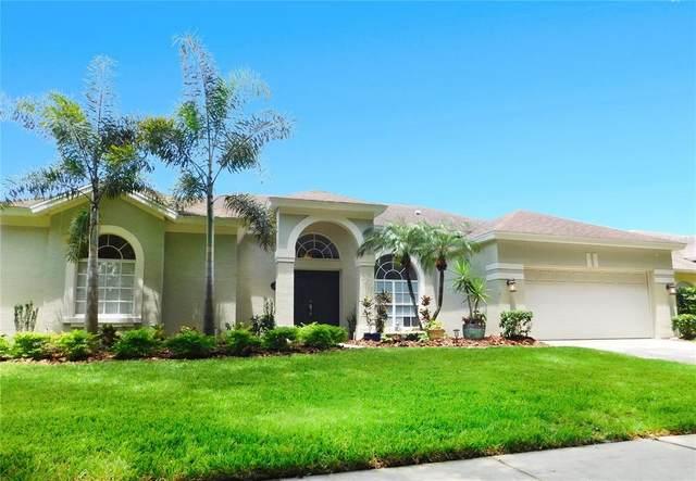 10116 Newington Drive, Orlando, FL 32836 (MLS #O5961720) :: Premium Properties Real Estate Services