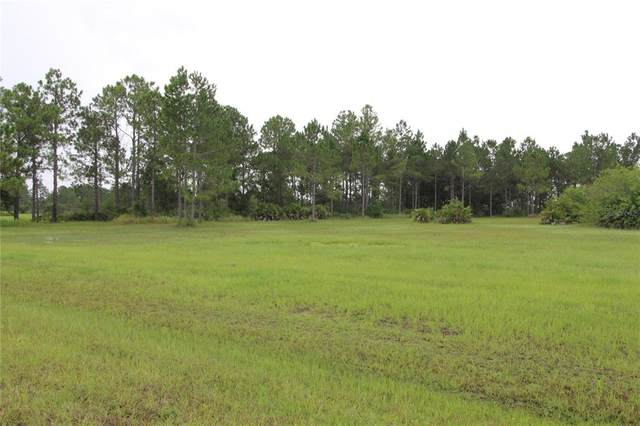 4550 Wright Bros Road, Frostproof, FL 33843 (MLS #O5961753) :: The Robertson Real Estate Group