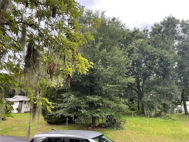6515 Lynn Road, Orlando, FL 32810 (MLS #O5961754) :: Expert Advisors Group