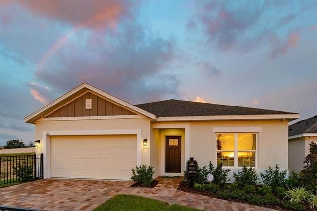 1183 Stratton Avenue, Groveland, FL 34736 (MLS #O5961781) :: Zarghami Group