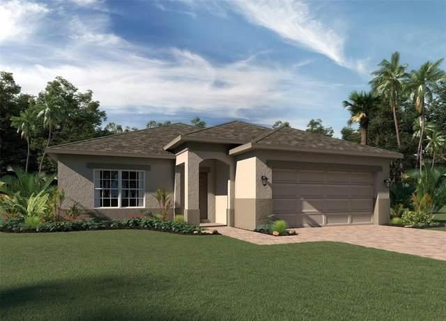 1181 Stratton Avenue, Groveland, FL 34736 (MLS #O5961784) :: Zarghami Group