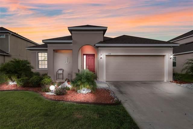 1178 Merion Drive, Mount Dora, FL 32757 (MLS #O5961965) :: Everlane Realty
