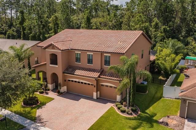 4920 Eastlake Vista Drive, Saint Cloud, FL 34771 (MLS #O5961998) :: Zarghami Group