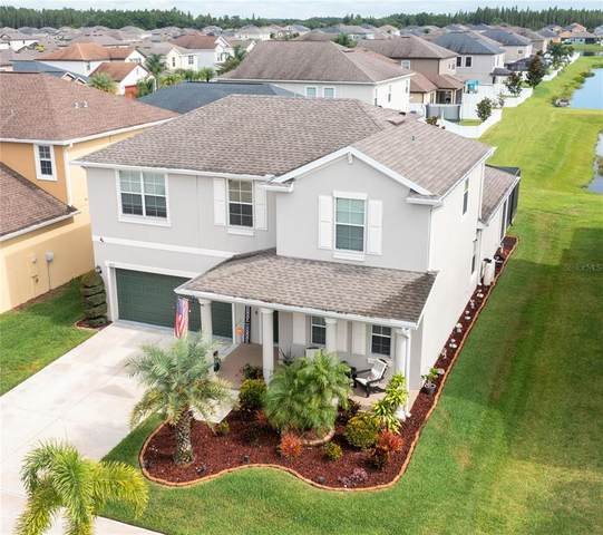 11717 Thicket Wood Drive, Riverview, FL 33579 (MLS #O5962106) :: The Robertson Real Estate Group