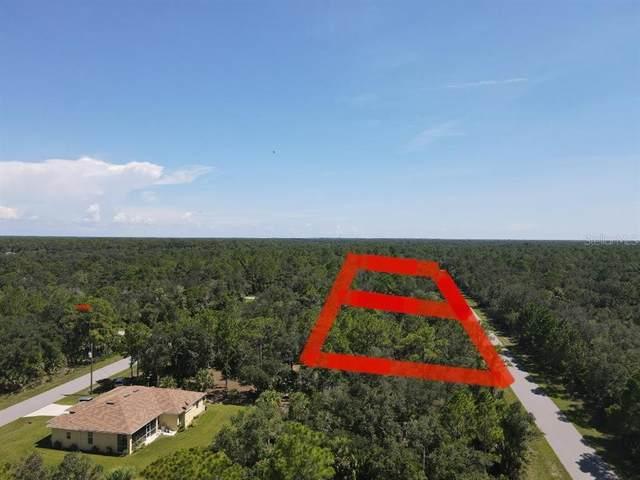 441 Juper Street, Port Charlotte, FL 33953 (MLS #O5962148) :: Everlane Realty
