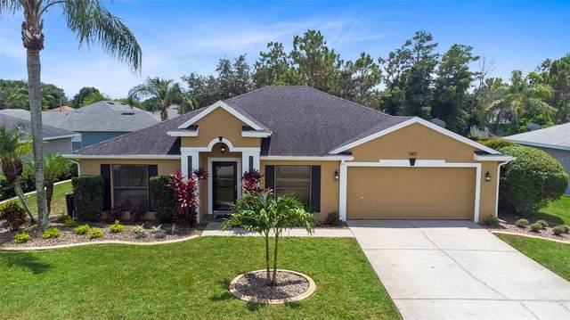 1401 Broken Pine Road, Deltona, FL 32725 (MLS #O5962217) :: MVP Realty