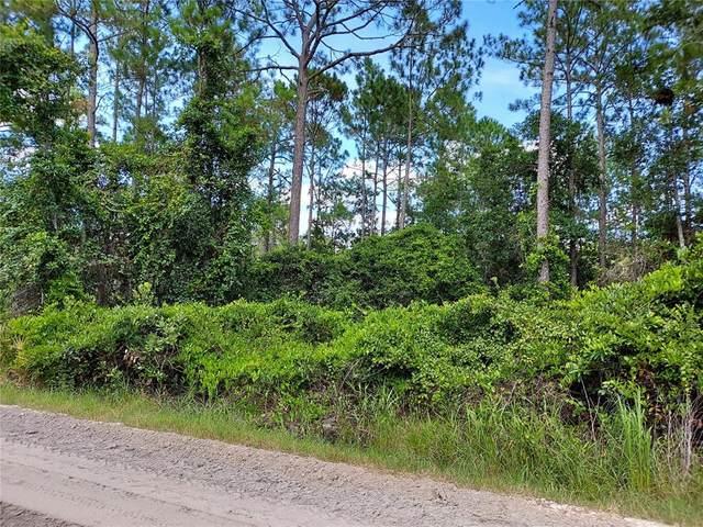East Parkway, Deland, FL 32724 (MLS #O5962393) :: The Heidi Schrock Team