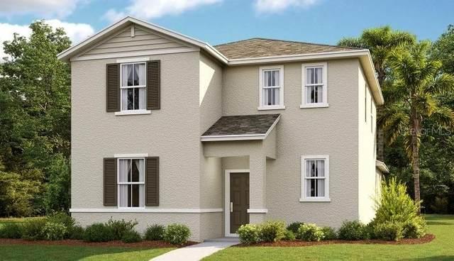 1355 Grassland Avenue, Saint Cloud, FL 34771 (MLS #O5962399) :: Vacasa Real Estate