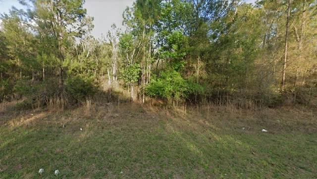 Alabama Drive, Hawthorne, FL 32640 (MLS #O5962585) :: Gate Arty & the Group - Keller Williams Realty Smart