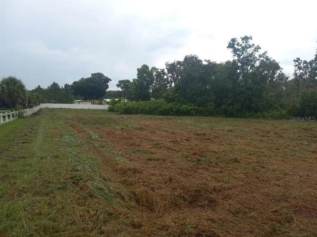 3408 N Forbes Road, Plant City, FL 33565 (MLS #O5962592) :: Cartwright Realty