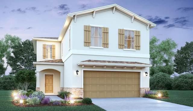 5191 Little Stream Lane, Wesley Chapel, FL 33545 (MLS #O5962625) :: Griffin Group