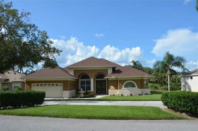 10648 Vista Del Sol Circle Circle, Clermont, FL 34711 (MLS #O5962672) :: Global Properties Realty & Investments